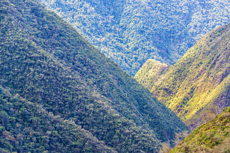 View of lush green jungle covered hills in Cotopata National Park near Coroico, Bolivia Imagens