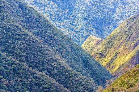 View of lush green jungle covered hills in Cotopata National Park near Coroico, Bolivia Banco de Imagens