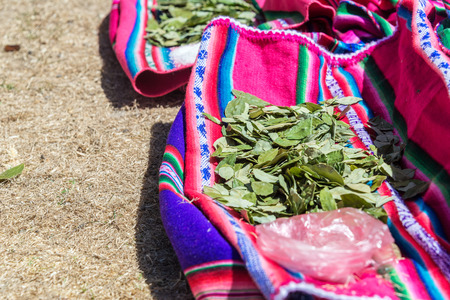 andean: Coca leaves resting on colorful traditional fabric on Island of the Sun on the Bolivian side of Lake Titicaca