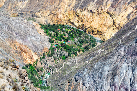 deepest: Lush green oasis in the dry Colca Canyon near Arequipa, Peru