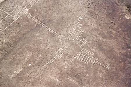 Nazca Lines hummingbird in Peru Standard-Bild