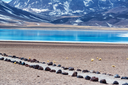 san pedro: Blue Lake Miscanti in Chile near San Pedro de Atacama