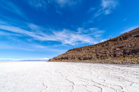 incahuasi: Uyuni salt flats in Bolivia with Incahuasi Island in the background Stock Photo