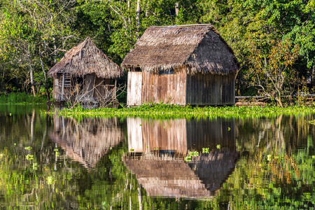 peru amazon: Two shacks reflected in the Amazon rainforest near Iquitos, Peru Stock Photo