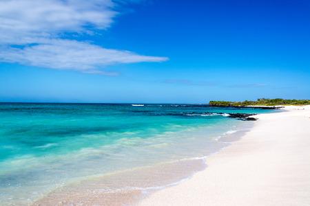 santa cruz: Pristine white Bacha Beach on Santa Cruz in the Galapagos Islands in Ecuador Stock Photo