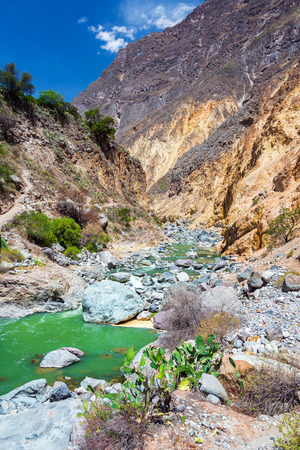 deepest: Vertical view of a beautiful green river in Colca Canyon in Peru Stock Photo