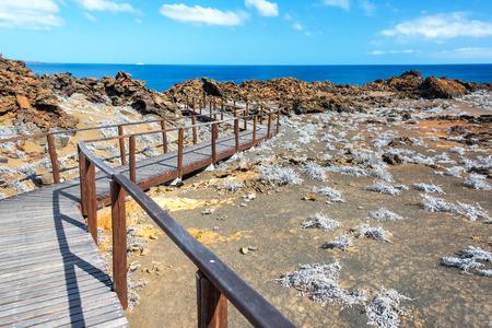 bartolome: Boardwalk passing through Bartolome Island in the Galapagos Islands
