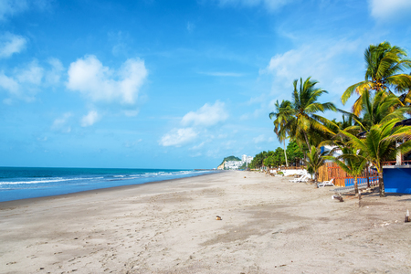 palm lined: Long stretch of sandy beach lined by palm trees in Same, Ecuador Stock Photo