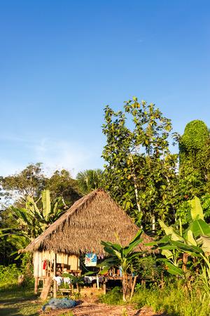 río amazonas: Vista vertical de una pequeña cabaña en el bosque tropical del Amazonas en Iquitos, Perú