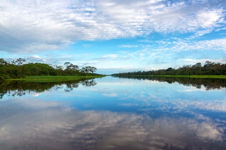 amazon river: Beautiful sky reflected in a river in the Amazon rain forest near Iquitos, Peru