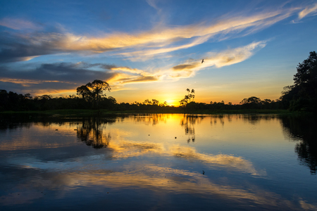 amazon forest: Beautiful sunset reflected on the Yanayacu River in the Amazon rain forest in Peru