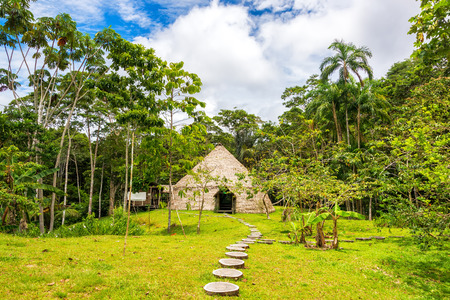 amazon rain forest: Lodge known as a maloka in the Amazon Rain Forest in Brazil