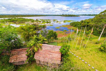 amazon forest: View of the Javari River in the Amazon rain forest in Brazil