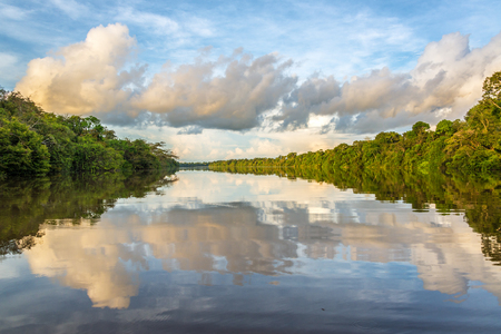 Clouds and jungle reflected in the Javari River in the Amazon rain forest in Brazil
