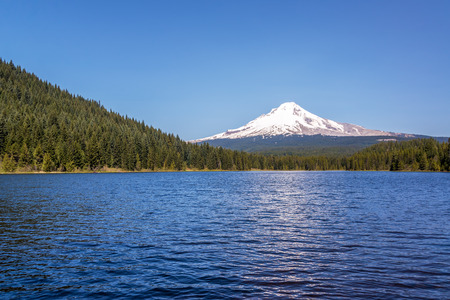 hood: View of Mt. Hood, pine trees, and Trillium Lake in Oregon