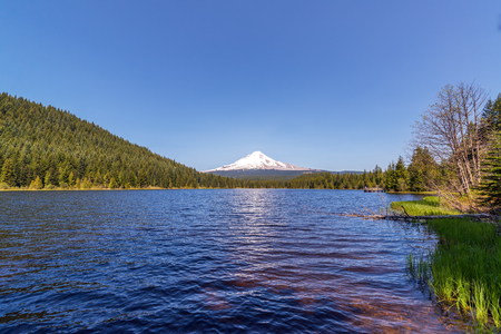 Wide angle view of Mt. Hood and Trillium Lake in Oregon