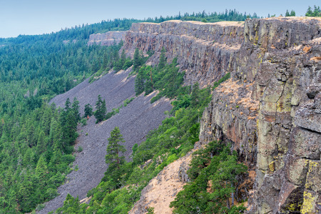 coyote: Coyote Wall in Washington in the Columbia River Gorge Stock Photo