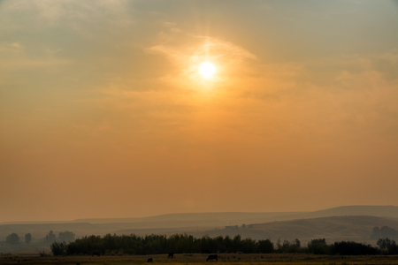 hazy: Early morning view of a field and a hazy sunrise due to forest fires near Missoula, Montana Stock Photo