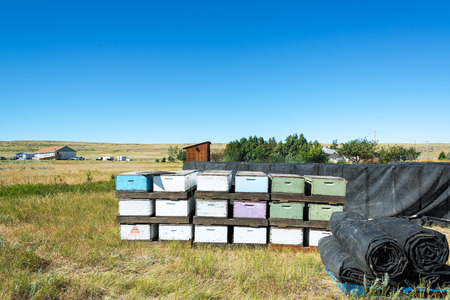 View of beehives in Buffalo, Wyoming Editorial