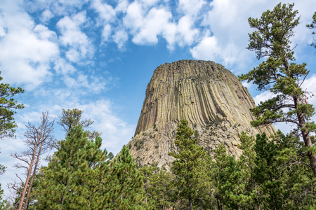 Devils Tower National Monument rising above a forest of pine trees in Wyoming Stock Photo