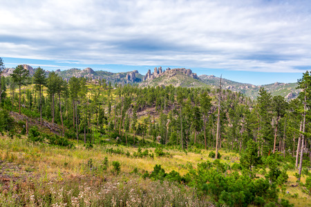 spires: Custer State Park landscape with the Cathedral Spires rock formation rising in the background