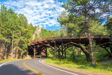 on the hill: Bridge in Custer State Park in South Dakota