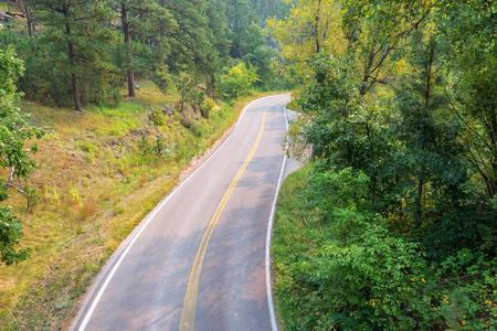 south dakota: Road passing through Black Hills National Forest in South Dakota Stock Photo