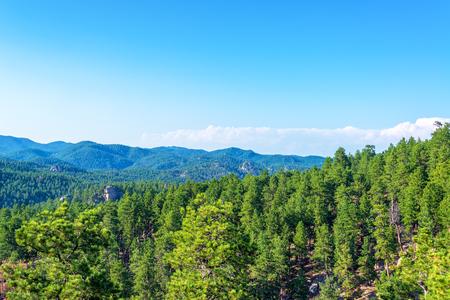 south dakota: Black Hills National Forest in South Dakota