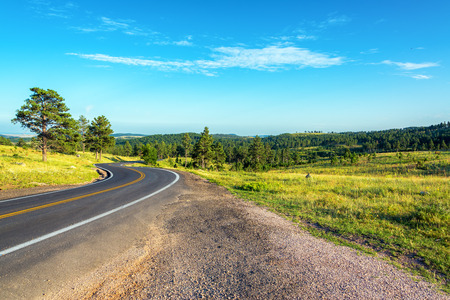 south dakota: Road curving though the Black Hills National Forest in South Dakota