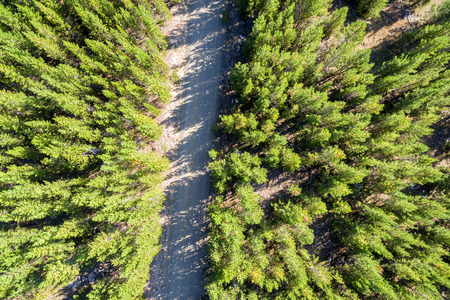 Aerial view of a dirt road passing through Bighorn National Forest in Wyoming Stock Photo