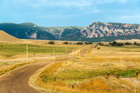 Dirt road leading through ranches to the Bighorn Mountains near Buffalo, Wyoming