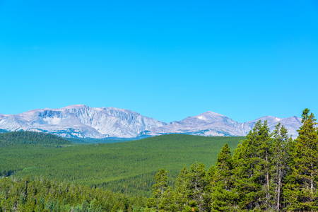 evergreen forest: Bighorn Mountain Range rising above a dense evergreen forest in Wyoming