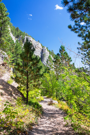 pine creek: Vertical view of a hiking trail in South Piney Canyon in Story, Wyoming