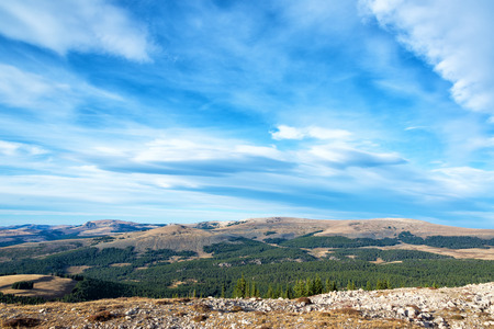 medicine wheel: Late afternoon landscape in the Bighorn Mountains near the Medicine Wheel