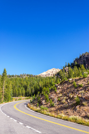 national forest: Highway curving through Shoshone National Forest in Wyoming, USA