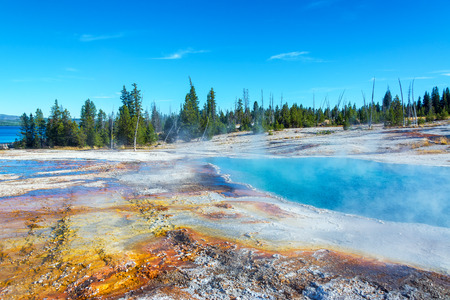 Steam rising out of Black Pool in West Thumb Geyser Basin in Yellowstone National Park