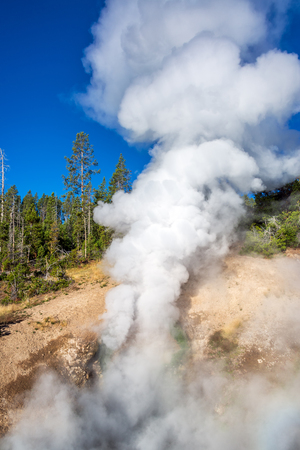 steam mouth: Steam rising from Dragons Mouth Spring at the Mud Volcano Area in Yellowstone National Park
