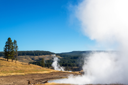 caldron: View of the Black Dragons Cauldron in Yellowstone National Park at the Mud Volcano Area