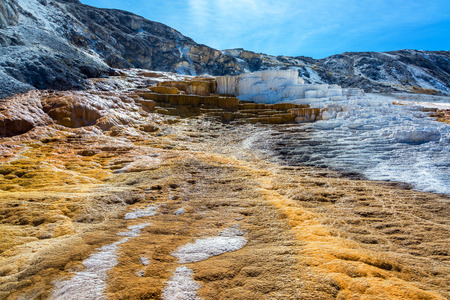 minerva: View of Minerva Terrace at Mammoth Hot Springs in Yellowstone National Park