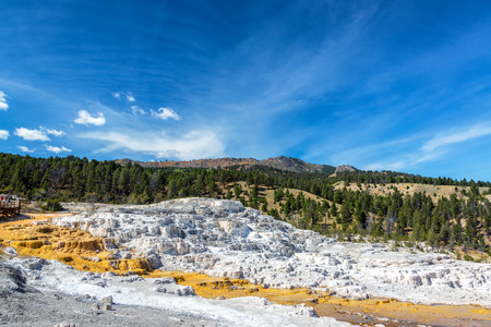 calcium carbonate: Travertine terrace landscape in Yellowstone National Park near Mammoth Hot Springs Stock Photo