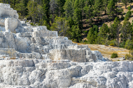 travertine: Travertine terraces at Mammoth Hot Springs in Yellowstone National Park Stock Photo
