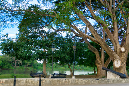 Trees and cannon on the riverfront in the colonial town of Mompox, Colombia