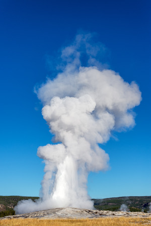 erupting: Vertical view of Old Faithful erupting in Yellowstone National Park Stock Photo