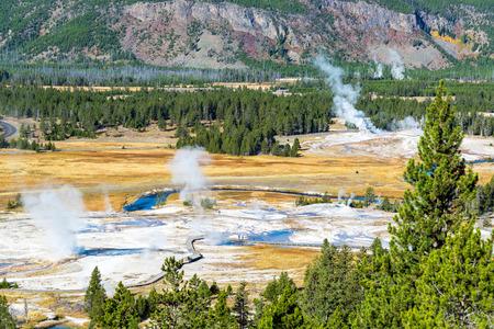 옐로 스톤 국립 공원의 위 간헐천 분지에있는 다양한 간헐천에서 온 증기 risin