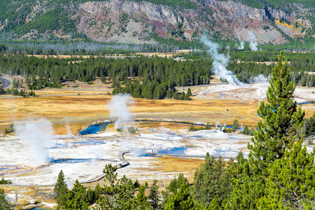 Steam risin from various geysers in the Upper Geyser Basin in Yellowstone National Park Stock Photo