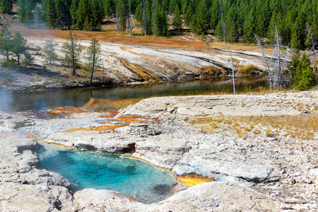 View of Spiteful Geyser on the shore of the Firehole River in Yellowstone National Park