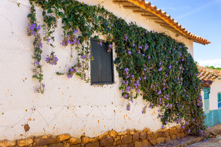 colonial building: Old colonial building with hanging purple flowers in Barichara, Colombia Stock Photo