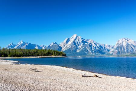 lake beach: Rocky beach on the shore of Jackson Lake in Grand Teton National Park