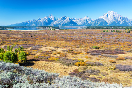 teton: Field and Teton Range in Grand Teton National Park