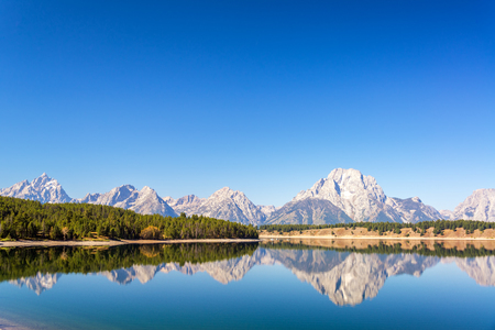 Teton Range and forest reflected in Jackson Lake on a beautiful clear autumn morning in Grand Teton National Park